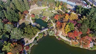 Shinzen Garden at Woodward Park, Fresno