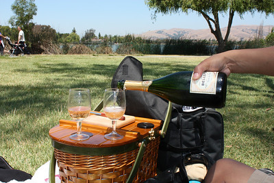 Champagne Picnic - July 2009