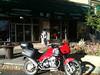 #4   Lotus Garden Chinese Restaurant Mandarin & Szechwan Cuisine, Mongolian BBQ,   56 W Center St.    Provo, UT.       30 Sept. 2012