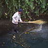 Cleaning River 扫河之人