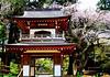 Shrine at Kamakura