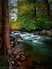 Flowing Serenity