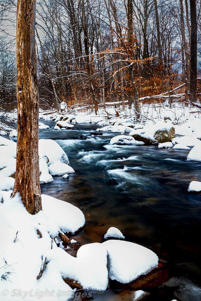 Frozen Flowing Serenity