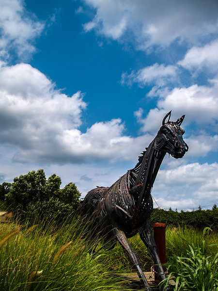 Iron Horse of Unionville