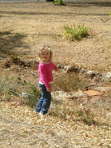 "Lizzie investigating the ""creek crossing"""