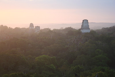 the sun coming up at tikal.. guatemala
