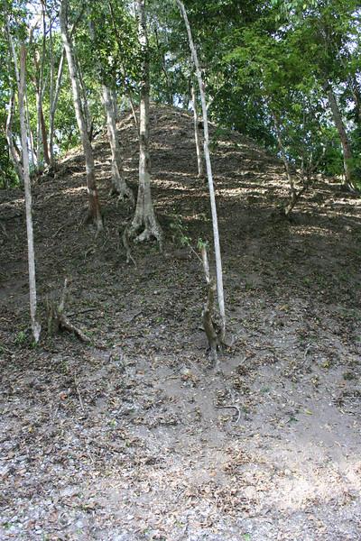 pyramid the way archeologists actually find them.. yaxha, guatemala
