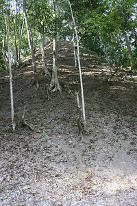 pyramid the way archeologists actually find them.. yaxha, guatemala