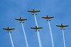 Chicago Air & Water Show 2008, Lima Lima Flight Team