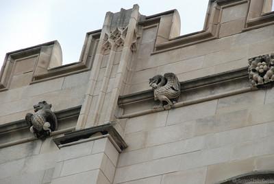 University of Chicago's gargoyles.