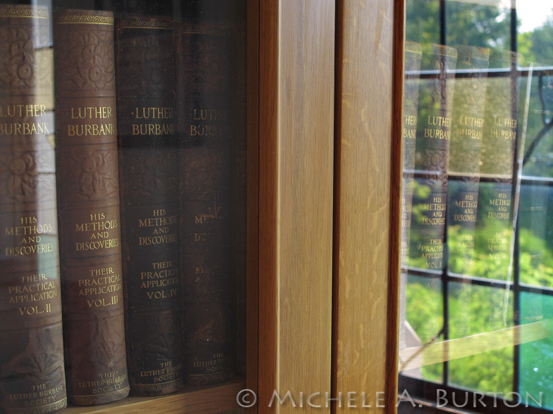 Luther Burbank books<br /> Olmstead Special Collection<br /> Riverside Public Library
