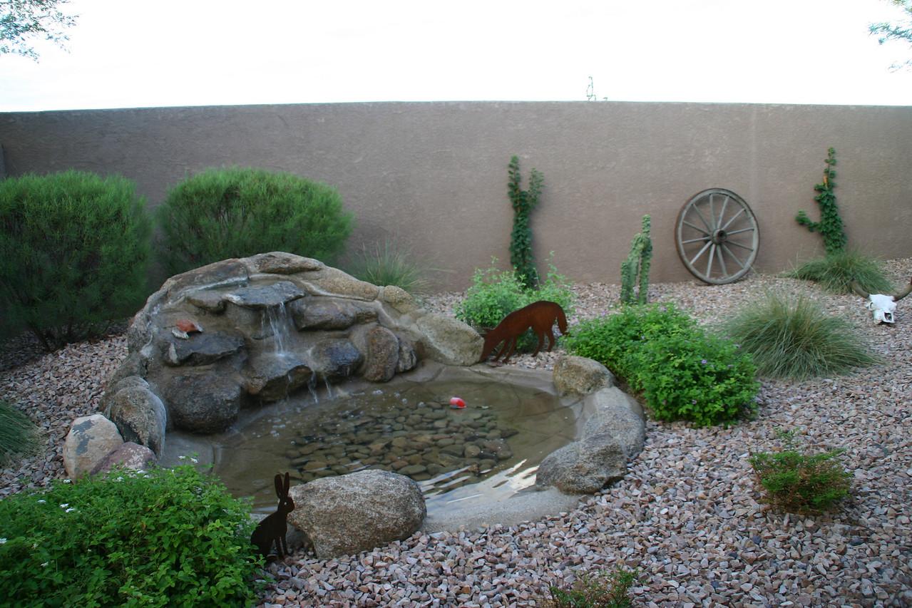 Bonnie's yard in AZ