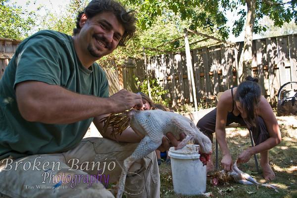 Chickenslaughterhigh_12