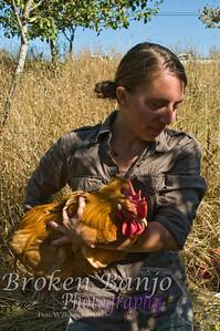 Chickenslaughterhigh_11