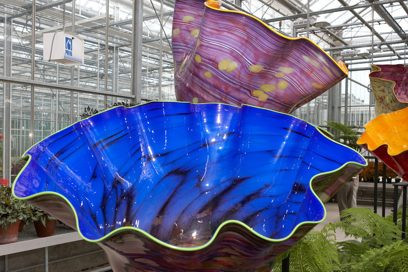 Chihuly_050