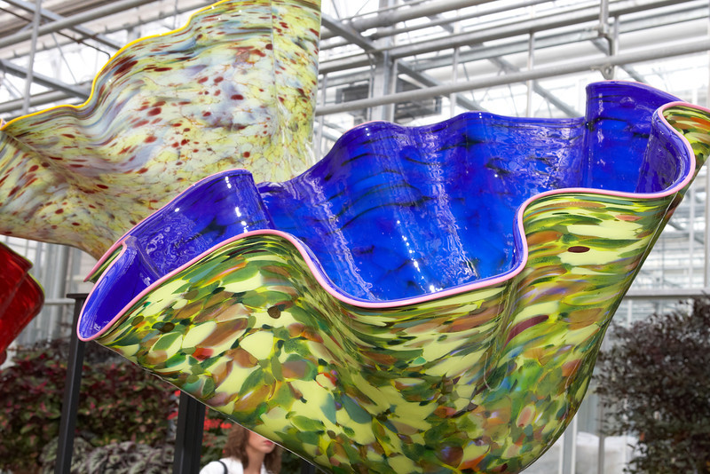 Chihuly_045