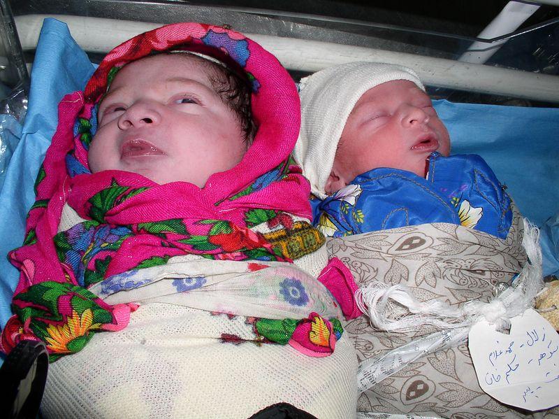 Sweet Afghani babies born September 14th.