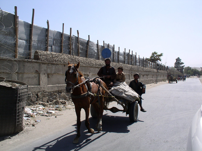 """Transportation around Kabul. This is in front of the ISAF base. Donkeys, horses, cows, cars, bikes - daily scene. This is the usual route I travel from home to """"Alpha Base"""" or the DOD base."""