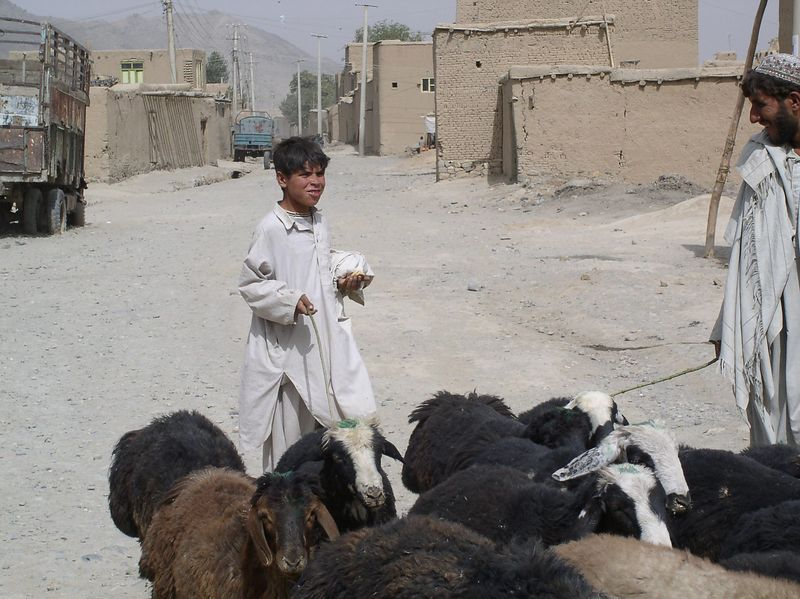 This is how teens in Afghanistan spend their summers. Village of Kalia Kasif to the west of Kabul.