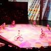 Bicycle Acrobats