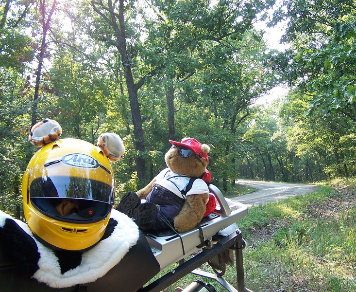 On MO Rt W.  Somewhere in the Mark Twain National Forest.  I wasn't too happy about AirForce tying me up on the back of his GS.  But alas, no bungees were available at the open house.