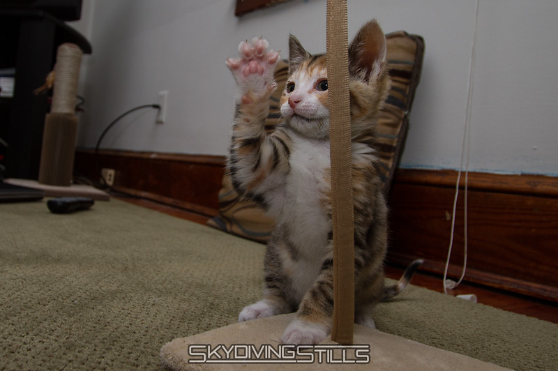"""I'll high five, but not so close!"""