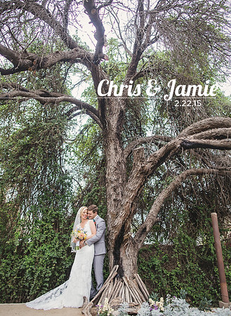 chris jamie album