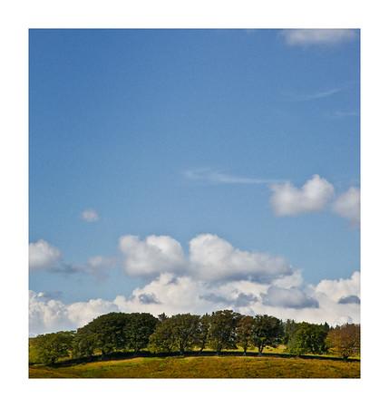Kielder_ Northumberland