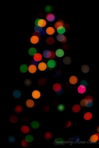 Merry Bokeh Christmas!