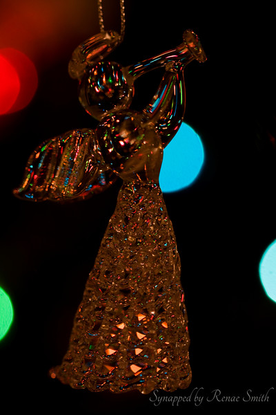 Heralding the Christmas Season