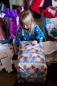 ALoraePhotography_Christmas_20151225_036