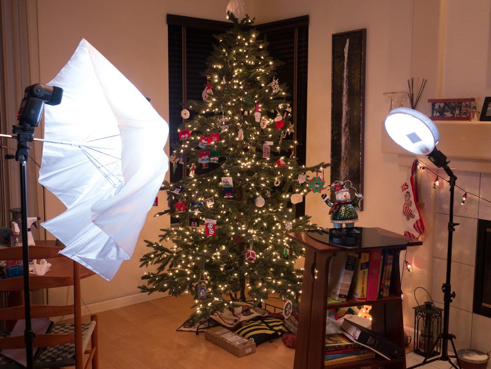 IMAGE: https://tandemhearts.smugmug.com/Other/Christmas-2015/i-xZWS4xt/0/XL/P1030216-XL.jpg