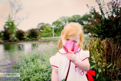 Flower (1 of 1)
