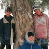 boys-tree