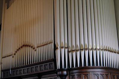 Organ - 3