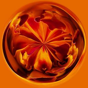 Flaming Circle!!