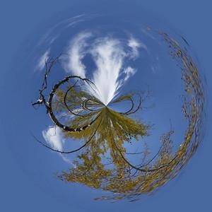 Aspen circle