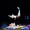 Cirque du Soleil  Varekai