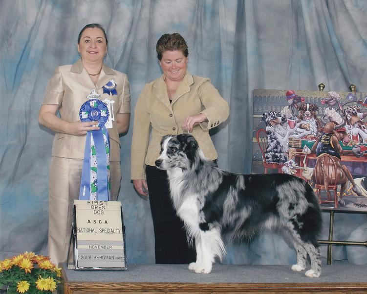 1st place open blue 2008 ASCA Nationals Las Vegas