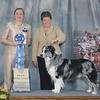 1st place open blue 2008 ASCA Nationals Las Vegas