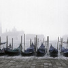 Moored goldolas, with view across to San Giorgio Maggiore, Venice, Italy.