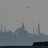 Historic Istanbul, Turkey, skyline at dusk, with flag.
