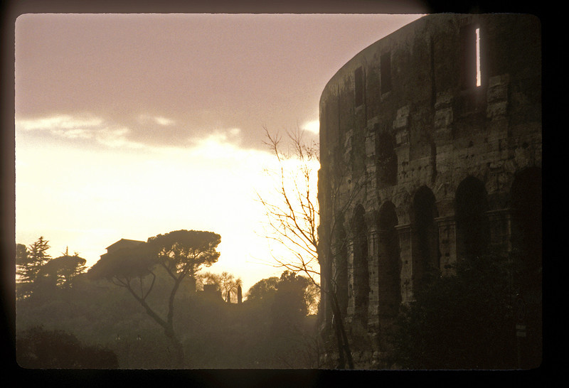 The colosseum after rain, Rome, Italy.