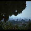Morning, Fez. Morocco.