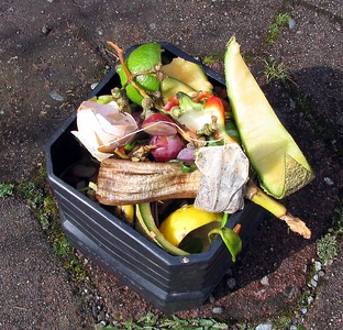 Raw veggies and fruit, coffee grounds, tea bags and egg shells go in.