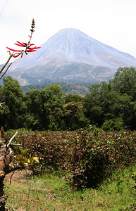 the active side of the volcano