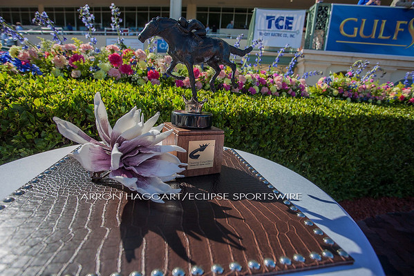 The Claiming Crown is a day of racing that puts the blue collar horses and connections in the national spotlight and to honor them in a day featuring 8 races worth $1 Million.