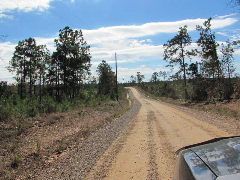 the road in....timber company land