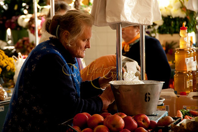 Apple vendor