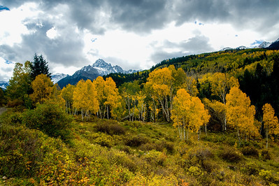 The Fine Colors of a Colorado Autumn